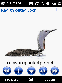 PocketBirds Europe is an easy to use bird identification guide
