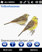 free AviaSoft Pocket Birds Europe for windows mobile phone