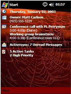 Spider Web Theme_1