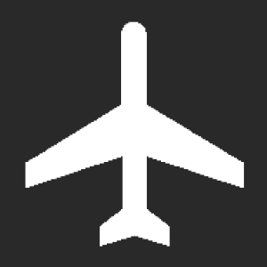 Airport Status Checker