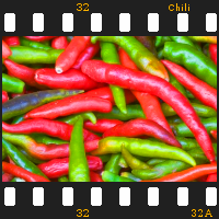 Download free Chili Slideshow software for Windows Phone 7