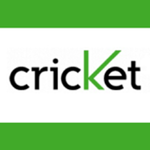 Cricket Feeds