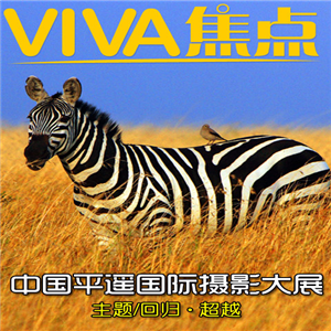 Download VIVA焦点 for Windows Phone 7